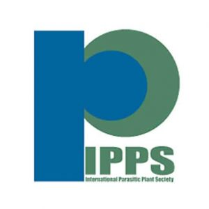ipps_logo_xl