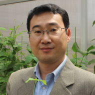Jianqiang Wu